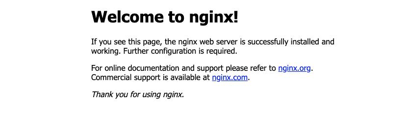 Nginx確認画面